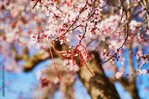 Branch of blossoming cherry tree with red and white martisor Fototapete