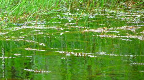 Fotobehang Fontaine Lago