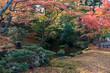 秋の金沢旅行 紅葉の兼六園 山崎山付近