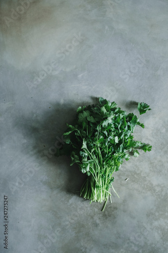 Fototapety, obrazy: Bunch of cilantro on a concrete table