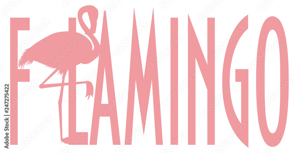 flamingo, pink flamingo, pink bird, bird, feathered, pink, animal, zoo, paradise, summer, word