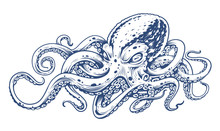Octopus Vintage Vector Art