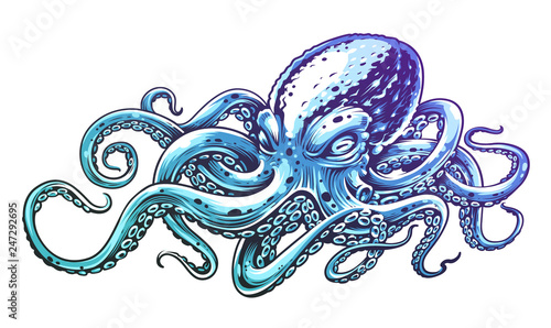 Blue Octopus Vector Art