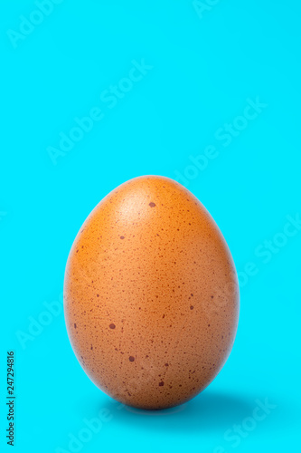 speckled brown egg on blue background