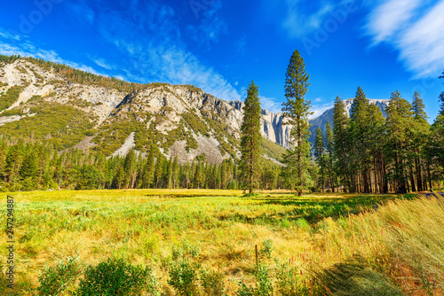Foto op Plexiglas Centraal-Amerika Landen Yosemite Valley. Magnificent national American natural park - Yosemite.