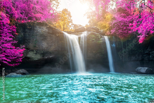 Amazing in nature, beautiful waterfall at colorful autumn forest in fall season  - 247299276