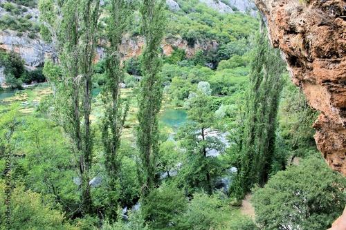 Fotobehang Olijf nature near the Roski slab waterfalls, N.P. Krka, Croatia