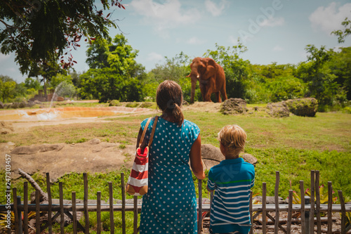 mother and son looking at elephants in zoo