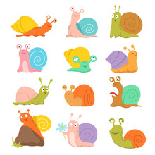 Cartoon Snail. Cute Slug, Mollusk With Shell And Escargot. Funny Animals Vector Characters. Snail Slug, Mollusk In Shell, Slow Wildlife Illustration