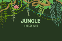 Jungle Tropical Background. Wildlife Adventure In Rainforest. Lina And Leaves Vegetation Frame. Exotic Landscape Vector Concept. Illustration Of Tree And Green Leaf Tropic