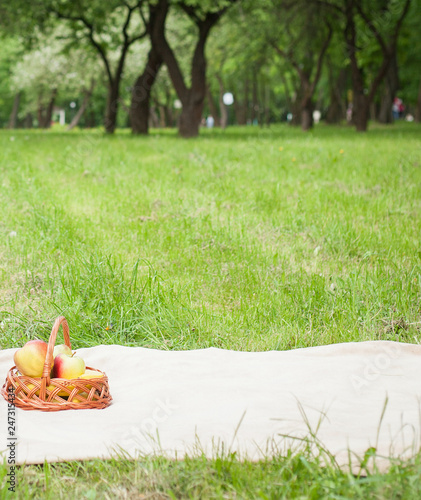 Poster Picnic Picnic in the park. A green meadow with grass, a plaid and apples in a basket. Romantic dinner in nature. Free space for text. Background