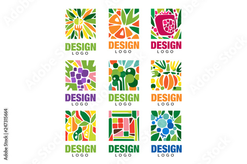 Colorful fruit logos collection. Original label template in rectangular shape. Healthy food concept. Flat vector design for packaging juice, organic shop poster or farm - 247315664