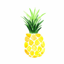 Yellow Pineapple Hand Painted Watercolour Illustration