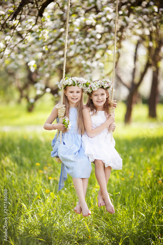 Obraz Two cute girls having fun on a swing in blossoming old apple tree garden. Sunny day. Spring outdoor activities for kids - fototapety do salonu