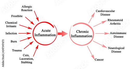 Acute and Chronic  Inflammation Wallpaper Mural