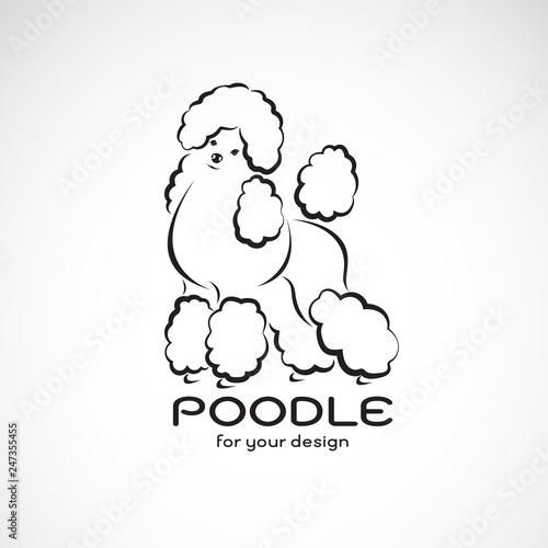 Tableau sur Toile Vector of poodle dog design on white background