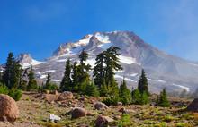 View Of Mount Hood, Oregon Fro...