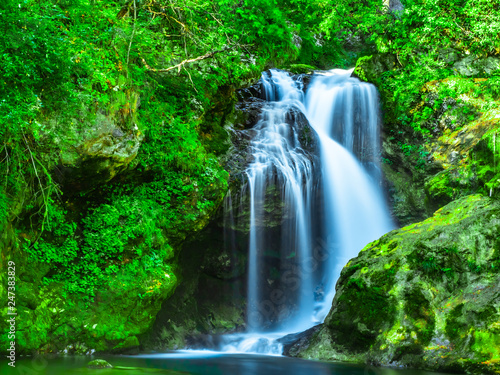 Spoed Fotobehang Groene Beautiful waterfall in the green natural forest of the Vintgar Gorges Park, in Slovenia, in summer, long exposure
