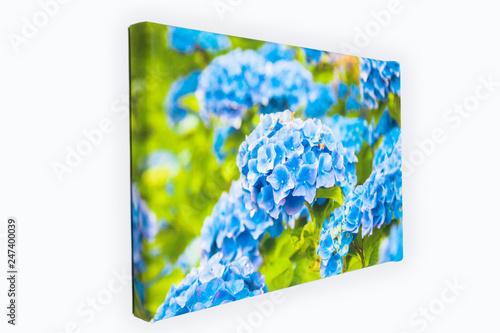 Fototapeta Obraz na płótnie, kwiaty obraz