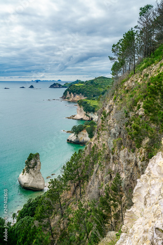 Foto op Canvas Cathedral Cove panorama of coastline of the cathedral cove,coromandel,new zealand 2