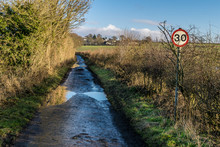 A Wet Country Lane With Hedgerows.