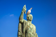Seagull On The Bronze Caesar Statue At Trajan Market In Rome, Italy