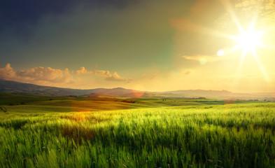 wiosenna ziemia uprawna i wiejska droga; wzgórza Toskanii