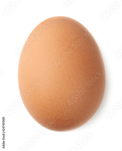 Single brown chicken egg Fotobehang