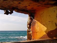 Tranquil View Of Summer Ocean ...