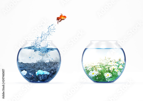 Foto Improvement and moving concept with a goldfish jumping from a dirty aquarium to