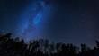Leinwanddruck Bild - Beautiful night sky with Milky Way over forest.