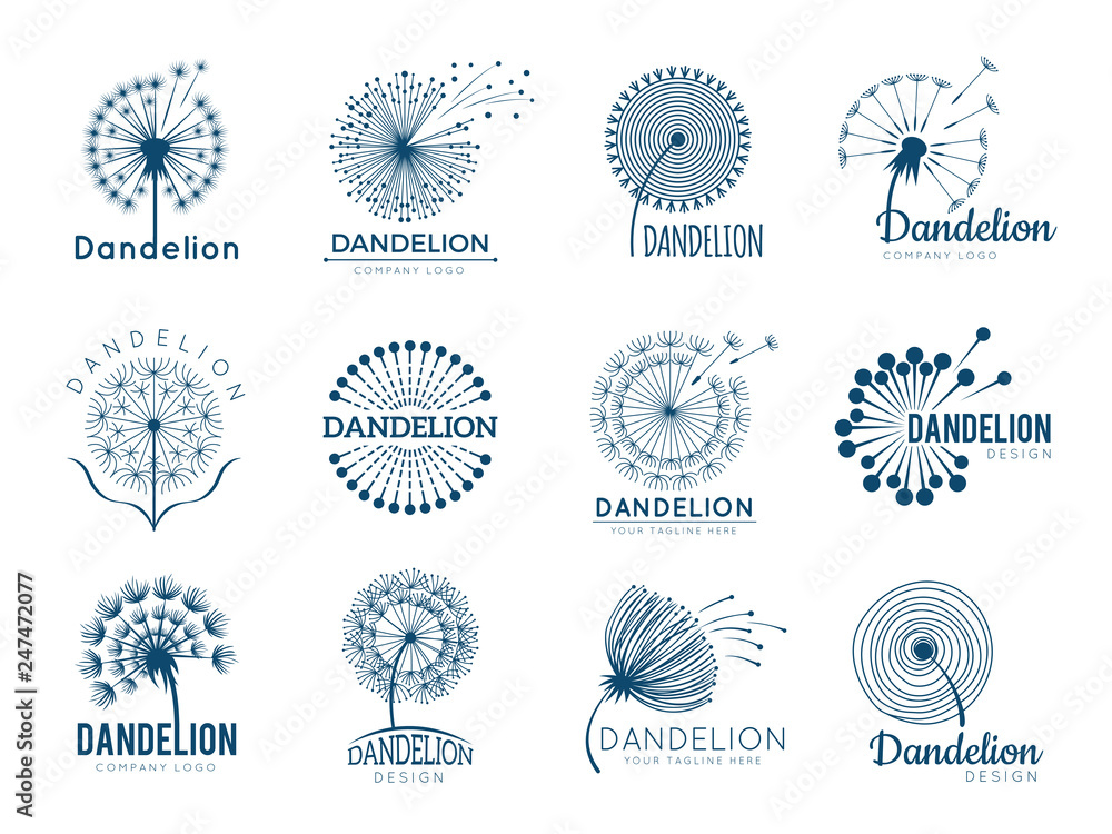 Fototapety, obrazy: Botany dandelion logo. Herbal leaves flowers vector illustrations for brand design. Brand and logo with dandelion plant silhouette, logotype of company