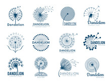 Botany Dandelion Logo. Herbal ...