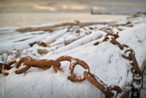 Snow on Beach Driftwood Poster Mural XXL