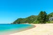 tropical beach in abel tasman national park, new zealand 76