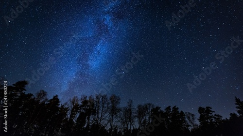 Fototapeta  Beautiful night sky with Milky Way over forest.