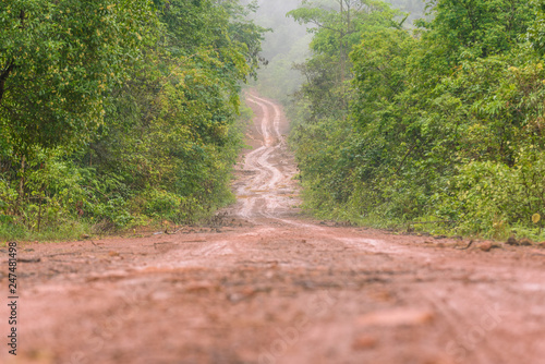 Photo  Dirty Rural road with puddles and mud in countryside
