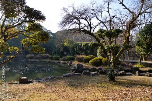 Plakat Japoński ogród w zimowy poranek