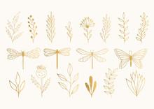 Set Of Golden Herbs, Dragonfli...