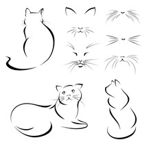 Cats. Images Of Cats, Lines. Vector