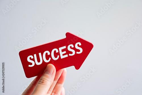 Fotografia, Obraz  SUCCESS