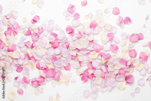 Door stickers Floral Pink rose flowers petals on white background. Flat lay, top view, copy space.