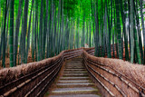 Fototapeta Bamboo - The Bamboo Forest of Arashiyama, Kyoto, Japan