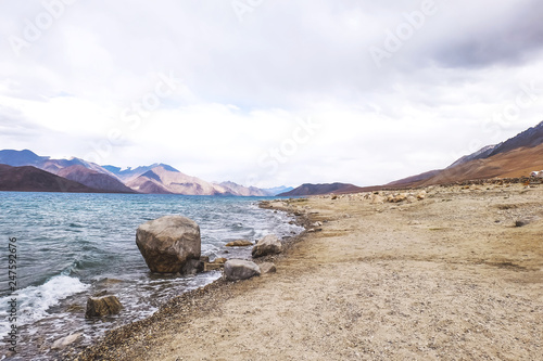 Poster Cote Pangong Lake in Ladakh. Pangong lake is an endorheic lake in the Himalayas situated at a height of about 4,350 m.