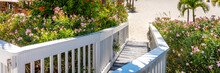 Wooden Boardwalk On Beach In St. Pete, Florida, USA