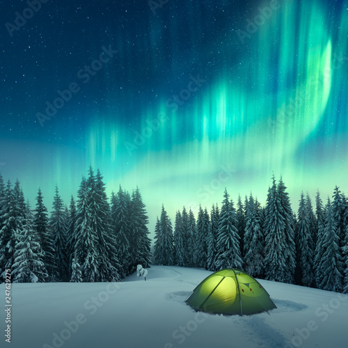 Foto auf Gartenposter Nordlicht Aurora borealis. Northern lights in winter forest. Sky with polar lights and stars. Night winter landscape with aurora, green tent and pine tree forest. Travel concept