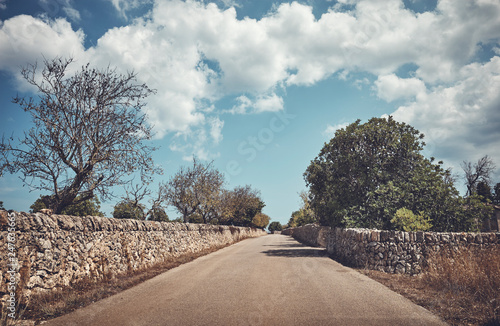 Papiers peints Pays d Afrique Color toned picture of a countryside road between stone walls, Mallorca, Spain.