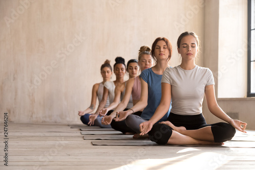 Fotografia  Calm female yogi practice yoga in lotus position together