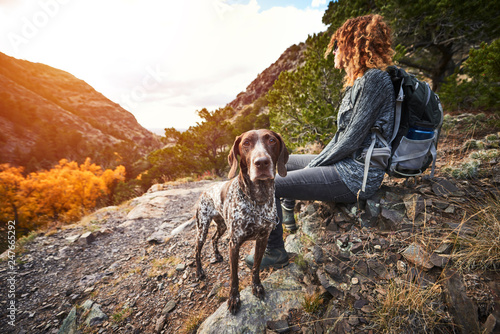 a young woman and her dog at the top of a mountain фототапет