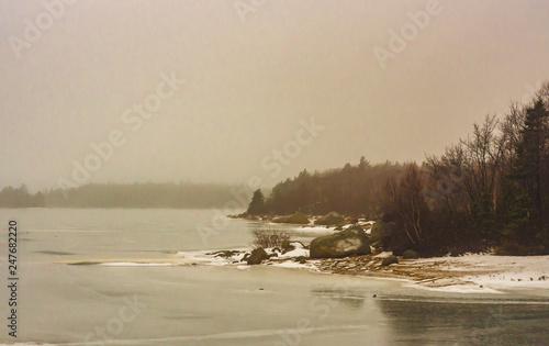 Fototapeta Winter lake shoreline on a misty day in Halifax, Nova Scotia, frozen, foggy. obraz na płótnie
